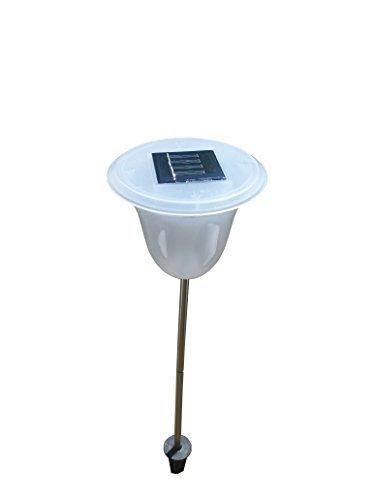 Außenleuchte Olmo, Solar, LED Solarlampe mit Farbwechsel, Gartenleuchte, 2 x LED