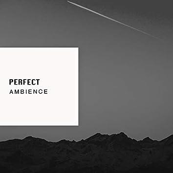 # 1 Album: Perfect Ambience