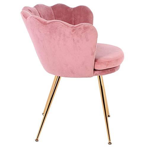Emoshayoga Paño + Silla de Hierro para Invitados, Silla de Terciopelo, sillón Rosa, sillón de Maquillaje, Terciopelo Retro para aparadores de Dormitorio en casa