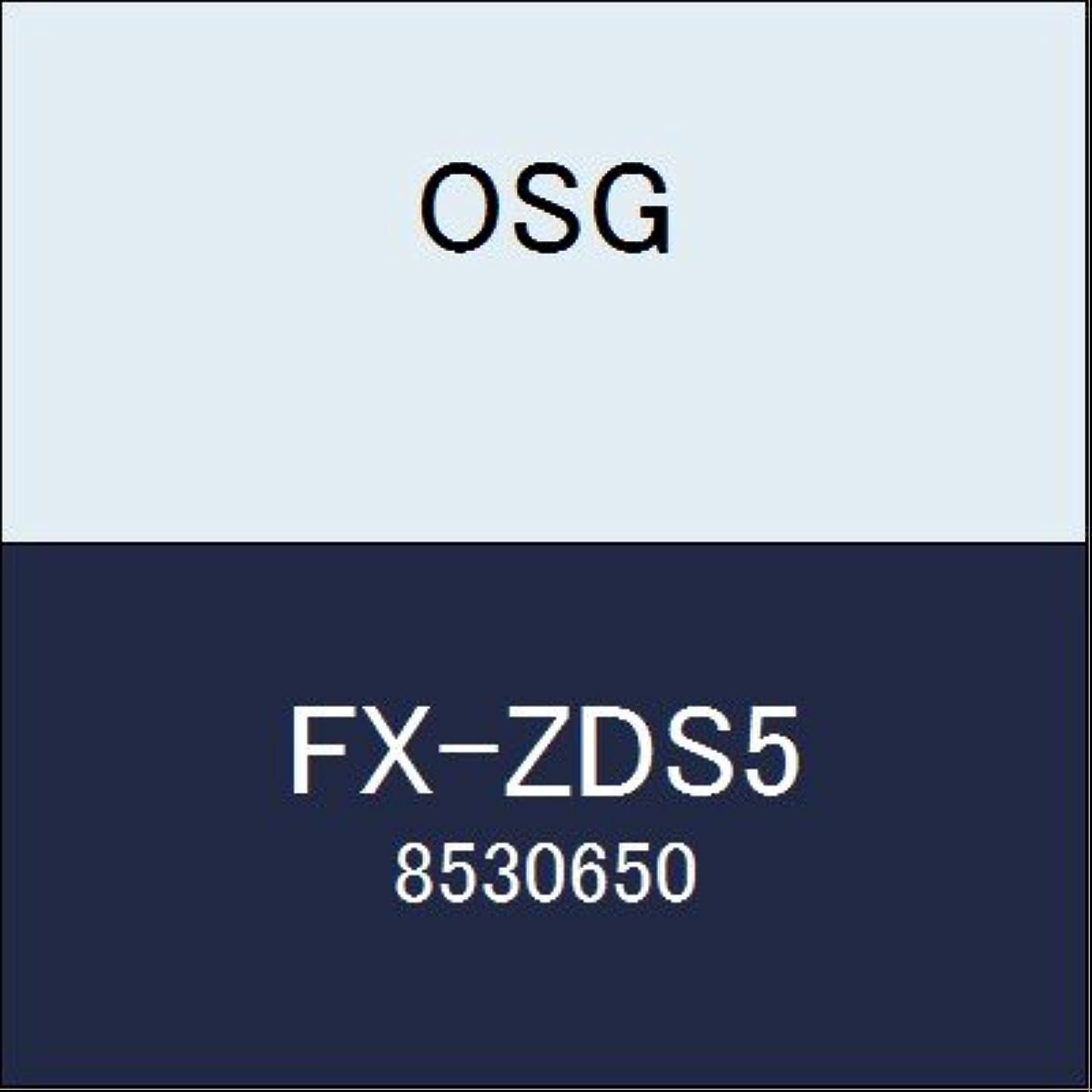 感心する排出アッティカスOSG エンドミル FX-ZDS5 商品番号 8530650