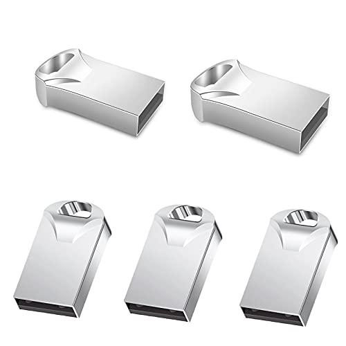 ZWWZ 5 pcs Mini Pendrive,USB Flash Drive,Pen Drive USB,con un Llavero de Metal,USB 2.0,Adecuado para Dispositivos con Interfaz USB como automóviles,computadoras,Audio de TV,etc,Plata