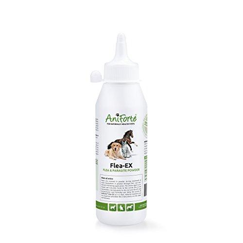 aniforte EX de pulgas en polvo 250ml: Natural Tratamiento de pulgas para perros, tratamiento de los ácaros y parásito Tratamiento