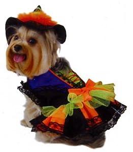 Dogs & Co Costume de Halloween pour chien sorcière–Parent ASIN