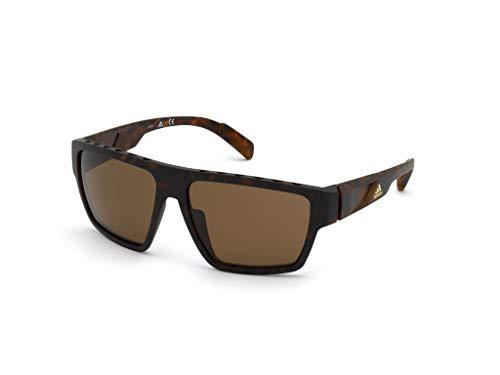 adidas SP0008 Gafas, dark havana/brown polarized, 61 para Hombre