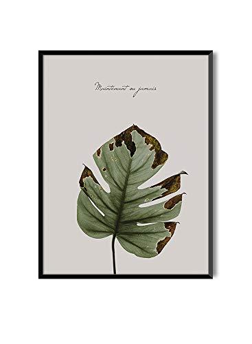 MILUKA Láminas para enmarcar colección FEUILLES (láminas Hojas Verdes)   Tamaño 30x40cm   20x30cm (30x40cm, Maintenant ou jamais)