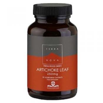 Terranova Artichoke Leaf, Fresh Freeze Dried, 250mg, 50 Vegetarian Capsules