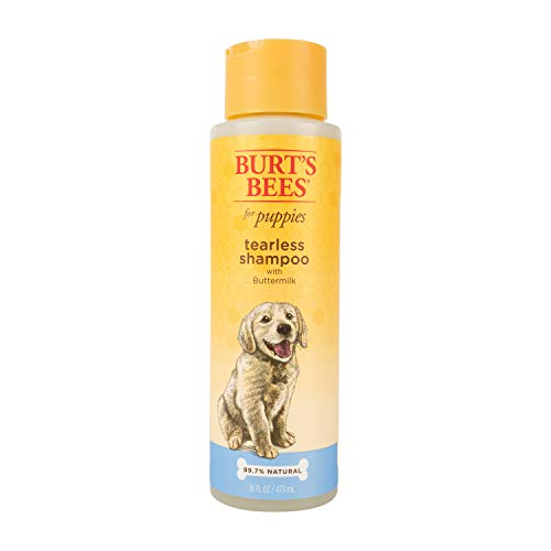 Burt's Bees for Dogs Natural Tearless Puppy Shampoo with Buttermilk | Dog and Puppy Shampoo For Gentle Fur, 16 Ounces