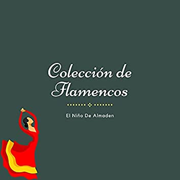 Colección de Flamencos