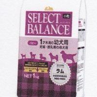【新】セレクトバランス パピー ラム小粒 1kg×4個セット
