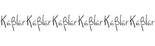 Peter & Christine Keßler Rheingauer Leichtsinn Riesling Qualitätsperlwein 2020 Trocken (6 x 0.75 l)