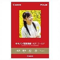 (業務用セット) キャノン Canon純正プリンタ用紙 写真用紙・光沢 ゴールド GL-101A320 20枚入 【×2セット】