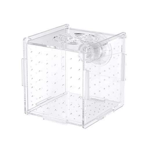 POPETPOP Isolierbox für Fischfutter Inkubationsbox für Aquarium, Brutkasten, multifunktional, 10 x 10 x 11 cm (Saugnapf-Modell)