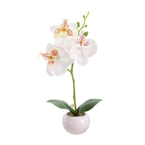 Qiuyongqiang Fiesta de la Boda Bonsai Planta de orquídea Mariposa simulada Bonsai en Maceta Flores Blancas Adornos para el hogar decoración de jardín,Blanco