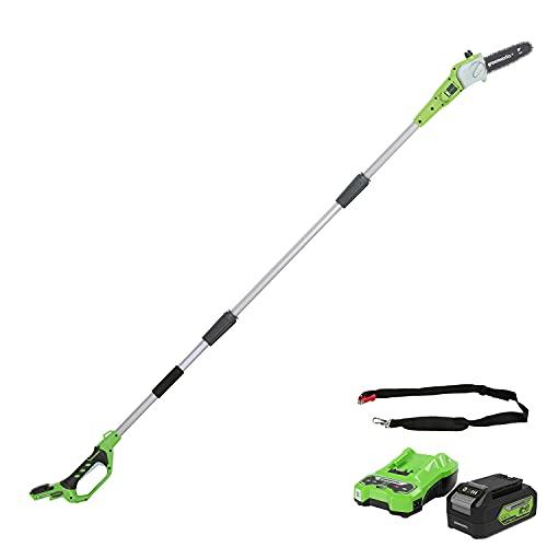 Greenworks Tools Motosierra telescópica inalámbrica de 20cm (Podadora) + Batería G24B4 2ª generación, Recargable de Li-Ion 24 V 4.0 Ah + Cargador de baterías G24C