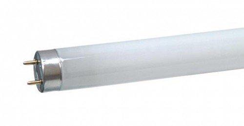 Sylvania Leuchtstoffröhre - L 59 cm Aquastar F18W 00644