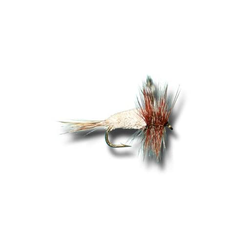 Trout or Grayling Fly Grayling Steel Blue Fishing flies 6 Pack Choice of sizes
