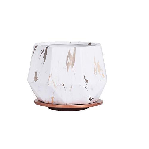 Bcaer Forma Planta carnosa cerámica Tiesto cuadrados con bandeja modelo mármol Tiesto Sembradora moderna minimalista nórdico Estilo Ins viento geométrica de cerámica 18cm Tiesto (4 colores)
