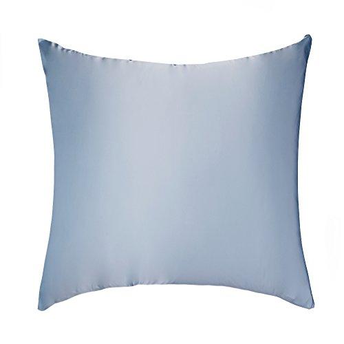 LULUSILK Kissenbezug, 100% reine Seide, 16Momme, mit verdecktem Reißverschluss, schont Haut und Haare, 1Stück 80 x 80 cm hellblau
