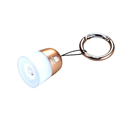 TROIKA Taschenlicht BAG LIGHT – TOR21/RG – rund, Kunststoff/Metal – Taschenlicht, Handtaschenanhänger und LED-Taschenlampe – weißes Licht – das Original von TROIKA