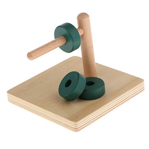 perfeclan Discos Montessori De Madera En Pasador Horizontal - Juguetes De Geometría para Niños - Coordinación De Mano A Ojo
