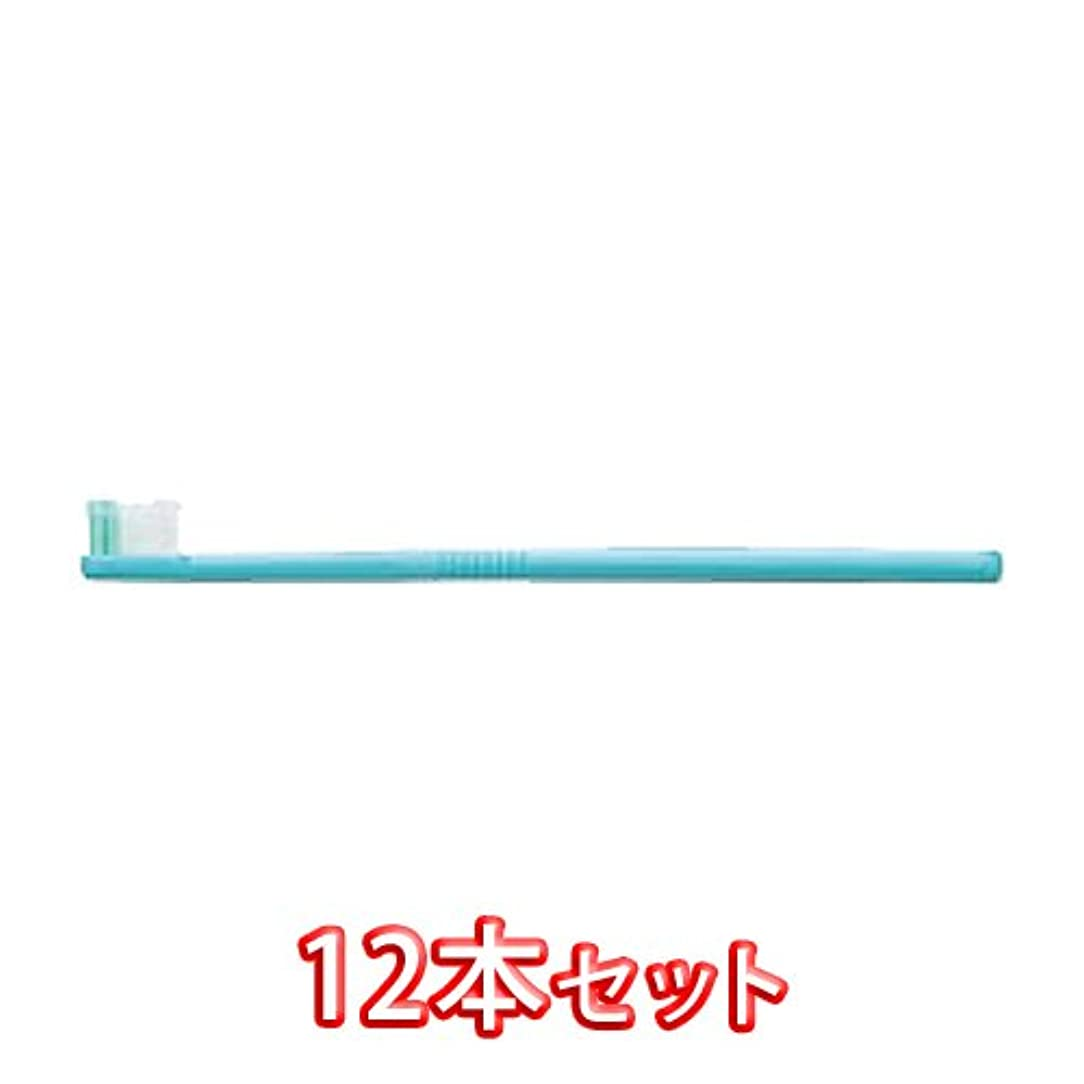 受信機寛大な私ライオン オルソドンティック 歯ブラシ DENT.EX Orthodontic-R 12本入