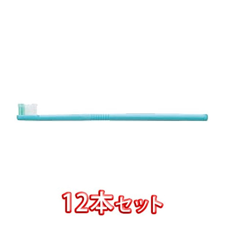 あからさま社会主義者ロックライオン オルソドンティック 歯ブラシ DENT.EX Orthodontic-R 12本入