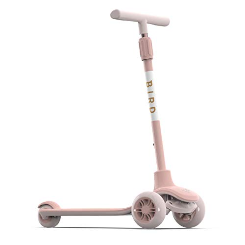 ie Non-Electric Kick Scooter for Kids with Adjustable Height Handle - Bird OBB0UB2