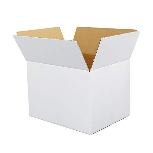 ボックスバンク ダンボール(段ボール箱)120サイズ 白 10枚セット 引越し・収納 FW05-0010-a