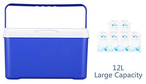 Mini refrigerador Cubierta de hielo Refrigerador portátil Refrigerador Caja de refrigerador, refrigerador de aislamiento Caja de almacenamiento Cooler para automóviles al aire libre Camping 21330