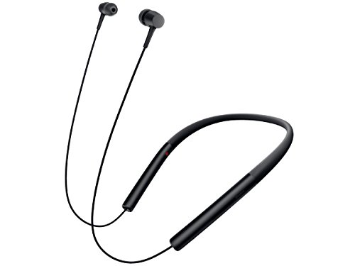 ソニー SONY ワイヤレスイヤホン h.ear in Wireless MDR-EX750BT : Bluetooth/ハイレゾ対応 リモコン・マイク付き チャコールブラック MDR-EX750BT B [並行輸入品]