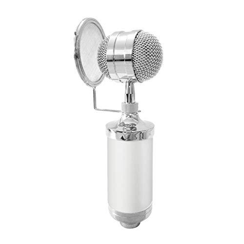 Mikrofon, Audio-Technica Mic AusgangsKTV Mic Kondensator Tonaufnahme Mikrofon mit Shock Mount & Pop-Filter for PC & Laptop, 3,5-mm-Kopfhöreranschluss, Kabellänge: 2,5 m Mi, Liqingshangmao.