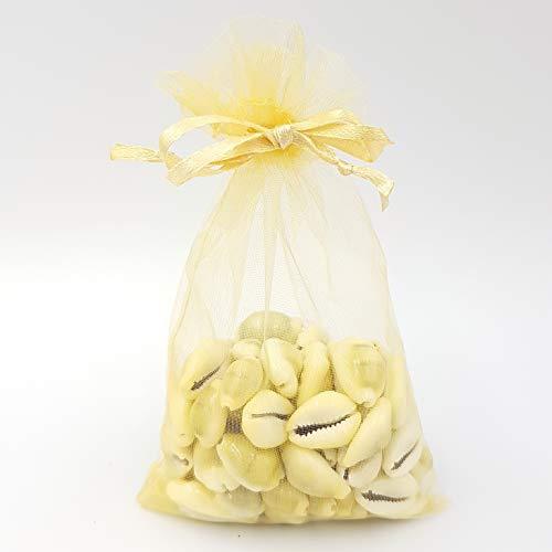 Natürliche kleine Cowrie-Strandmuscheln in Organza-Beutel – Polierte Muscheln für Hochzeiten, Partys, Pflanzen, Aquarien etc. 50g Organza Bag natur