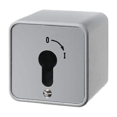 Berker Schlüsselschalter 2p. 4466 AP AQUATEC;DRUCKGUSS Installationsschalter 4011334202677