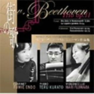 ベートーヴェン:街の歌