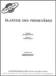 PLANTER DES PRIMEVERES