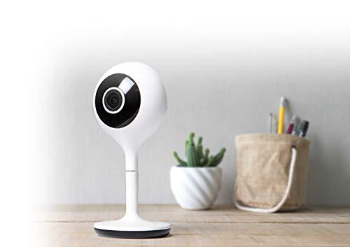 Avidsen – Camera – HomeCam, Interni connessi, Risoluzione di registrazione 1080p, Telecomunicazione via WiFi, possibilità in Kit – 127002