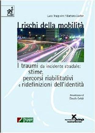 I rischi della mobilità. I traumi da incidente stradale: stime, percorsi riabilitativi e ridefinizioni dellidentità