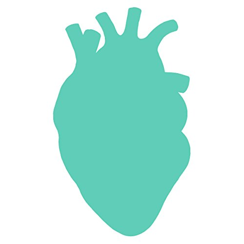 Anatomical Heart Silhouette Cardiologist Logo - Vinyl Decal for Outdoor Use on Cars, ATV, Boats, Windows and More - Mint 11 inch