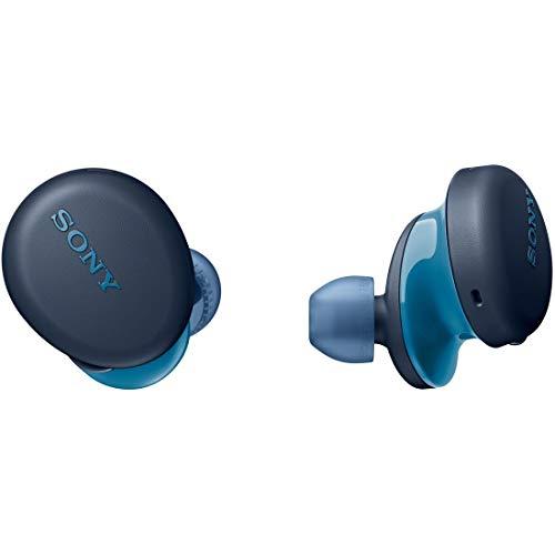 ソニー 完全ワイヤレスイヤホン WF-XB700 : 重低音モデル / 最大9時間連続再生 / マイク搭載 2020年モデル 360 Reality Audio認定モデル ブルー WF-XB700 LZ