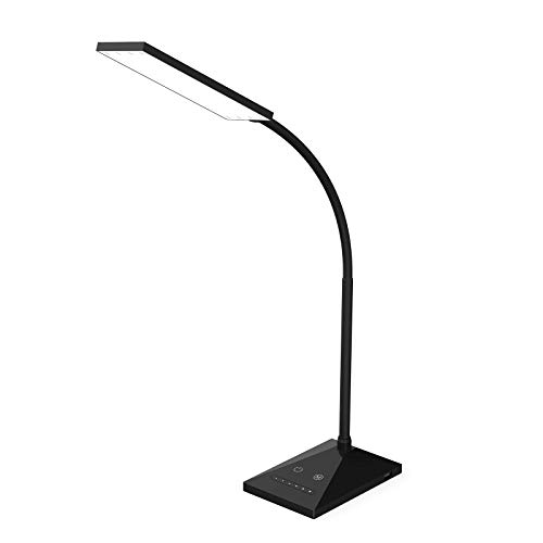 RAOYI LED Desk Lamp