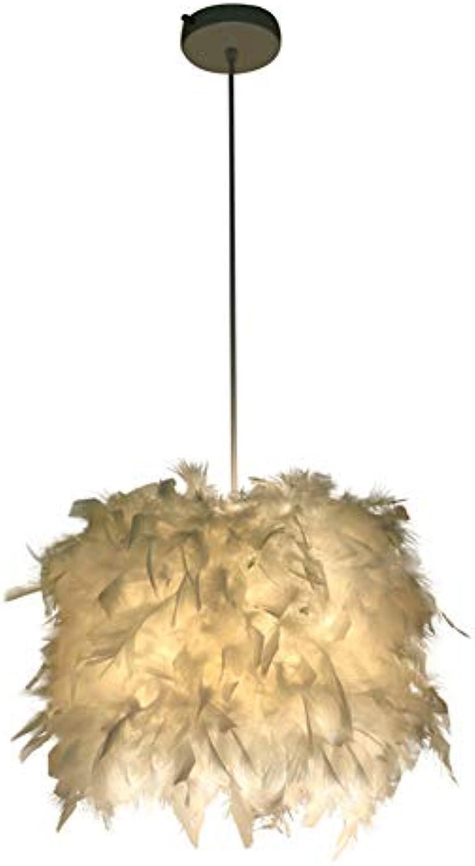 LXSEHN Persnlichkeit Feder LED Decke Leuchter, Wohnzimmer Schlafzimmer Licht Pendelleuchte Lampenlaternen (Farbe   Wei-D30cm)