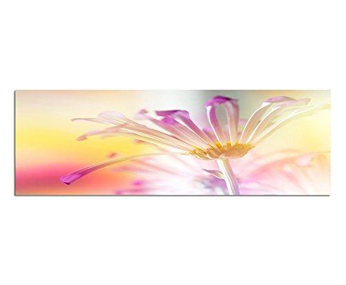 Panoramabeeld op doek en spieraam 150x50 cm bloem bloem kleurfilter close-up