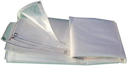 YUEDAI Transparent Thicken Rainproof Tarpaulin Tarp Ground Sheet Covers Tent Awning Plastic Shed Cloth Windproof Outdoor, Multi Sizes, 200G/M² (Color : White, Size : 8x10m)