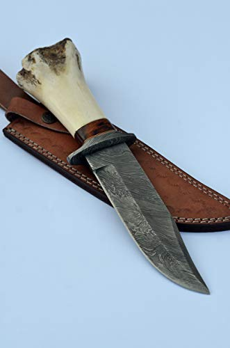 BK-3012 Handmade Damascus Steel 12.00 Inches Damascus Steel Bowie Knive - Rose Wood & Camel Bone with Brass & Micarta Spicier Handle With Beautiful Damascus Gurd