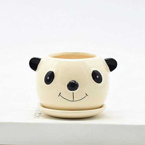 RMEX Vaso per Piante succulente Simpatico Fiore Animale Fioriera Vaso da Fiori Crea Design Simpatici animaletti Giardino Domestico Vasi per Bonsai, 1 pz