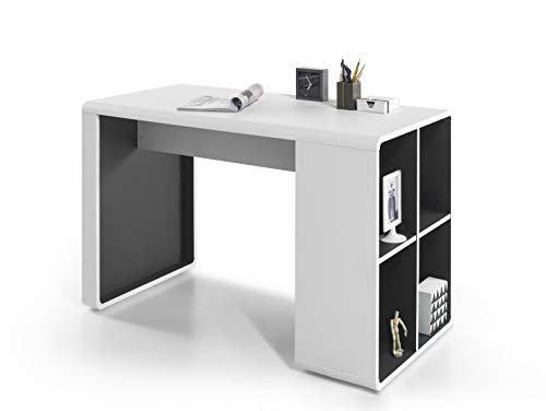 Robas Lund Schreibtisch Weiß Matt Anthrazit Computertisch Bürotisch, Tadeo BxHxT 119 x 76 x 59 cm