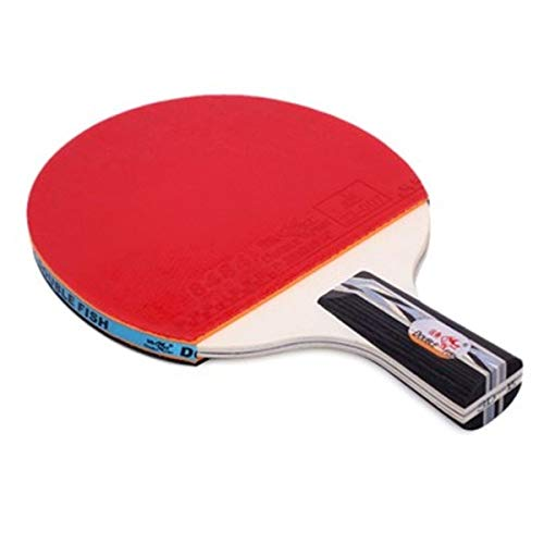 Buy XSWY Table Tennis Racket, Genuine Double-Sided Anti-Adhesive Racket, 2 Packs (Send: 10 Balls + 2...