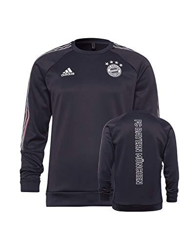 FC Bayern München Travel Sweatshirt grau, L