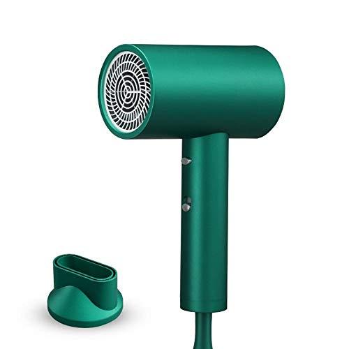 Elektrische haardroger met hoge prestaties voor kapperskappers met mute-schakeling, speciale haarverzorging, haardroger, grote wind, groen