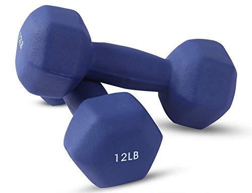 Top 10 Best Adjustable Dumbbells Flaman Fitness Comparison